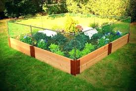 protecting garden from animals protect vegetable garden protect your garden from animals vegetable garden fencing how protecting garden from animals