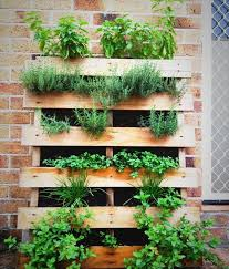 Small Picture Simple Pallet Herb Garden Planning on basil thyme rosemary