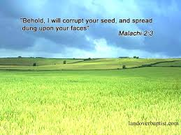 Seed Quotes Bible