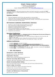 Sap Fico Resume Sample 16 Nardellidesign Com
