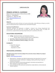 Job Interview Resume Pelosleclaire Com