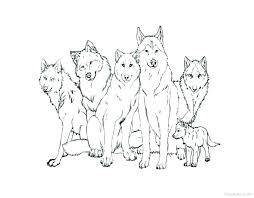 Free Printable Wolf Coloring Pages 17601 Icce Unescoorg