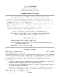 Sample It Resume Sample Resume For An It Professional Sample Resume
