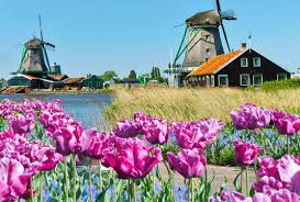 Choose your pathway programme and find out about our. Schonste Orte In Holland Am Meer Tui Villas Reisetipps