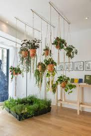 ... Terrarium Design, Indoor Hanging Plant Holders Indoor Hanging Plants  With Flowers Hanging Plants Window Indoor ...