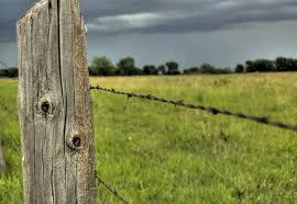 fence post. Santa Rosa Fence Post