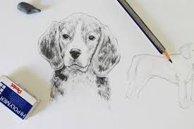 realistic animals to draw. Beautiful Realistic Drawing Dogs Tutorial To Realistic Animals Draw E