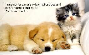 cute animals quotes. Simple Cute Cute Animal Quotes Inside Cute Animals Quotes