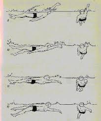 Реферат Плавание способом кроль на спине com Банк  Плавание способом amp quot кроль на спине amp