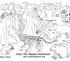 Coloring Pages Forest Animals Detailed Animal Coloring Pages Forest Animals Page Sea For Adults