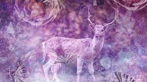 deer or reindeer dream dictionary