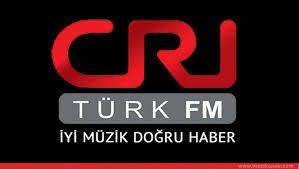 CRİ_Türk logosu ile ilgili görsel sonucu