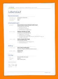 5 Professioneller Lebenslauf F Hrungskraft Questionnaire Templated