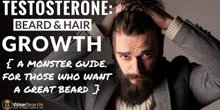 testosterone its effect on beard hair growth 22 ways to increase it