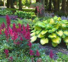 shade garden love the color combos love the astilbes must have addition for next spring shade companions shade garden shade garden plants garden