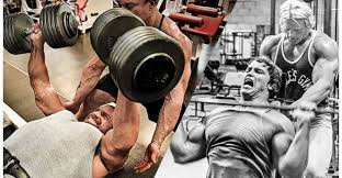 Bench Bench Pyramid The Best Bench Press Workout Ideas Pyramid Increase Bench Press Routine