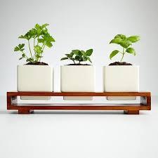 Indoor herb planter // Great Gardens & Ideas //