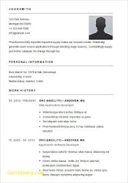 Basic Resume Form Basic Resume Form Barca Fontanacountryinn Com