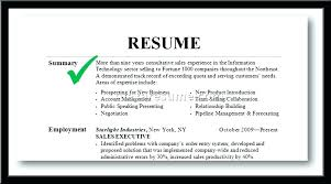 Summary For Resume Examples What To Write In Of Homely Ideas