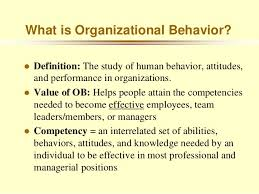 What Is Organizational Behavior What Is Organizational Behavior Magdalene Project Org