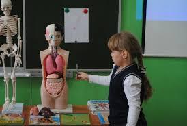 Мы и наше здоровье Организм человека Конспект урока по   Мы и наше здоровье Организм человека Конспект урока по окружающему миру с