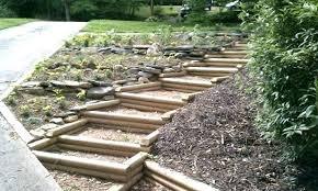 wooden walkways for garden garden path made with wood curvy wooden walkway ideas wooden garden how