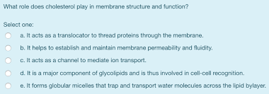 cholesterol play in membrane structure