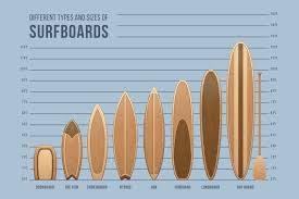 Surfboard Chart Amazon Com Surfboards Size And Type Chart Cool Wall Decor