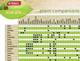 Vegetable Companion Planting Charts A Full List Of Companion Plants In A Downloadable Pdf