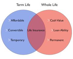 Whole Life Insurance Quote Comparison