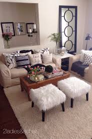 Living Room Decorating Ideas For Apartments Masterly Pic On