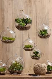 indoor gardening ideas. Hanging Terrariums Create Mini-garden Worlds Filled With Your Favourite Small Plants In Glass Spheres. Assorted Rogue Spheres, From $29.95, Indoor Gardening Ideas D