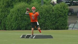 Bengals Day At Camp 8 5 Offense Struggles Finley With The
