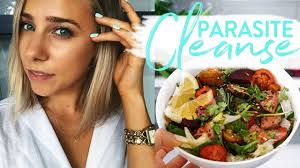 parasite cleanse how i m curing myself naturally home remes