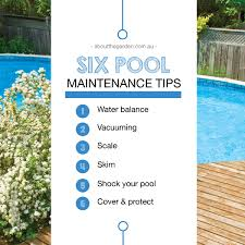 Swimming Pool Maintenance Tips Homey Ideas 10 .