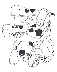Small Picture 65 best Paw patrol images on Pinterest Paw patrol coloring Paw