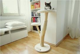 stylish cat furniture. Stylish Cat Furniture Image Of Style Contemporary Modern Canada . A
