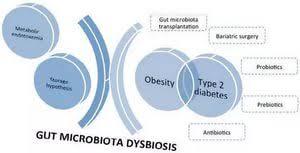 type diabetes essay best writing schools in america type 2 diabetes essay