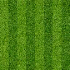fake grass texture. Artificial Grass At ScS Fake Texture E
