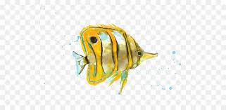 watercolor painting tropical fish art kiss yellow fish picture material png 600 435 free transpa watercolor painting png