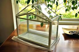 indoor green house mini greenhouse kit tropical plants kitchen