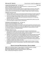 Cio Resume Template Cio Technology Executive Resume Examples