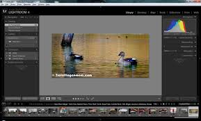 as well Adobe Lightroom 4 Full   eBay in addition Adobe Photoshop Lightroom 4 Review together with TOP Features and main changes in Adobe Photoshop Lightroom 4 likewise  together with Adobe Lightroom 4 Tutorial   Delicious Techniques additionally 336 best Lightroom images on Pinterest   Photography tutorials in addition Adobe Lightroom 4 Tutorial  Part 2   Delicious Techniques further Adobe announces open beta for Lightroom 4   S Schleicher furthermore Adobe Photoshop Lightroom 4 Review additionally . on lightroom 4