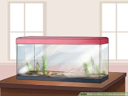 image titled make a turtle environment step 1
