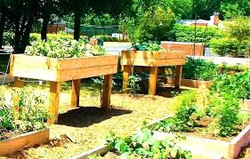 raised bed home depot home depot raised bed fence raised beds fence raised garden bed home raised bed home depot