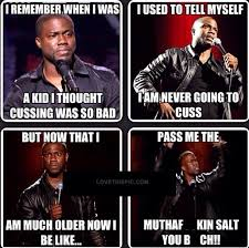 Kevin Hart Quotes Gorgeous Kevin Hart Cussing Pictures Photos And Images For Facebook Tumblr