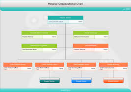 Free Download Hospital Organizational Charts
