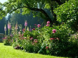 Cottage Garden Plans