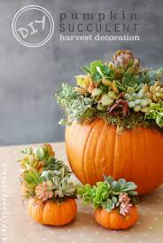 Cheap easy fall decorating ideas Pumpkin Diy Fall Decorating Ideas Live Better Lifestyle 10 Stunning Diy Fall Decorating Ideas Live Better Lifestyle