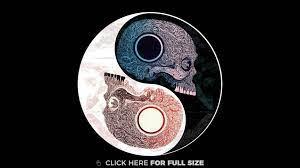 Skull Yin Yang 4K